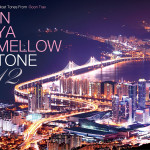 『IN YA MELLOW TONE 12』のSpit at the Worldに参加しています。