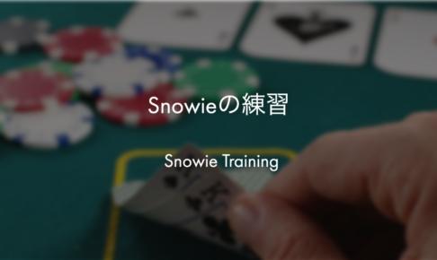 ポーカー:Snowieの練習
