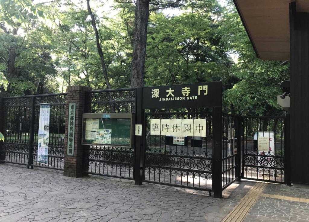 神代植物公園:調布市のひとり旅・散歩におすすめの観光&食べ歩きスポット