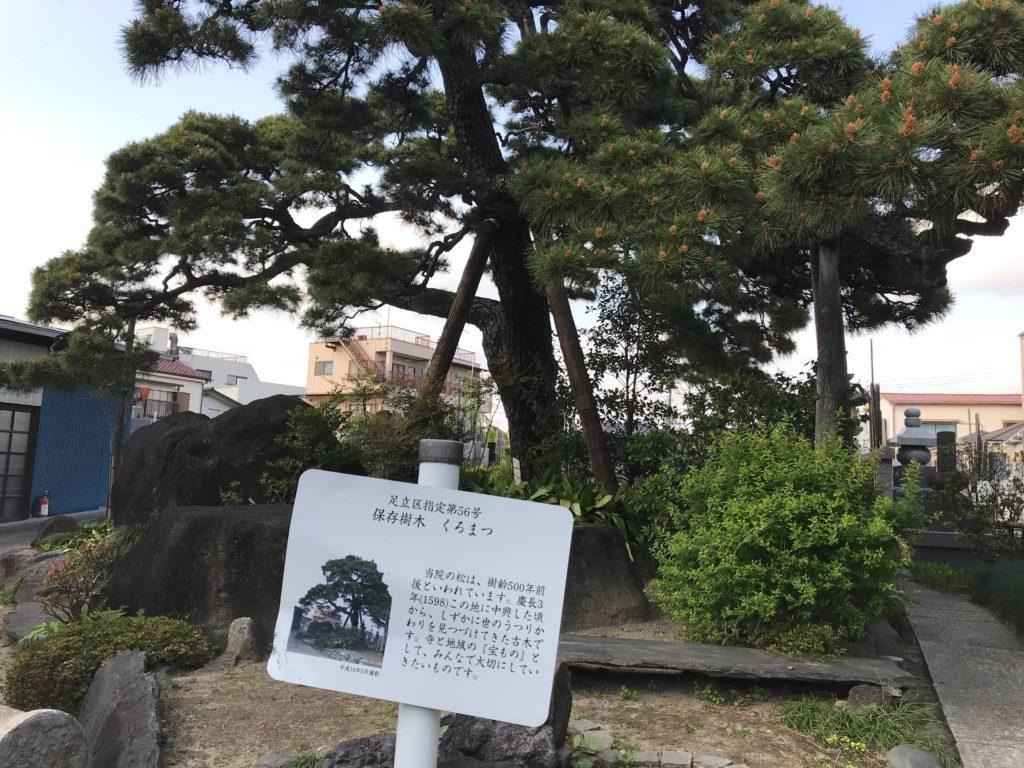 安養院(元・長暦寺)の内部:北千住のひとり旅・散歩・観光スポット