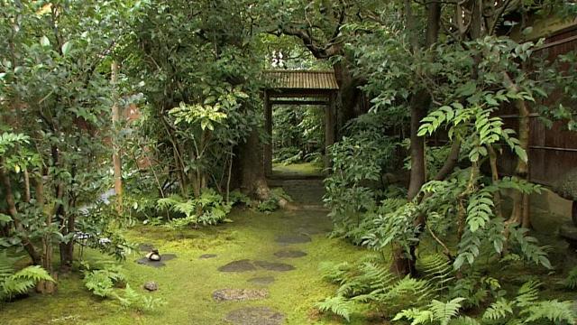 京都の露地(茶庭):裏千家の今日庵